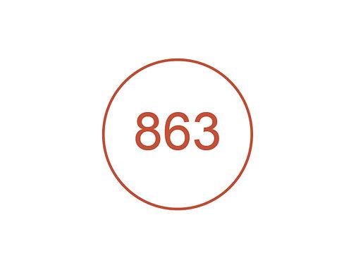 Número 863