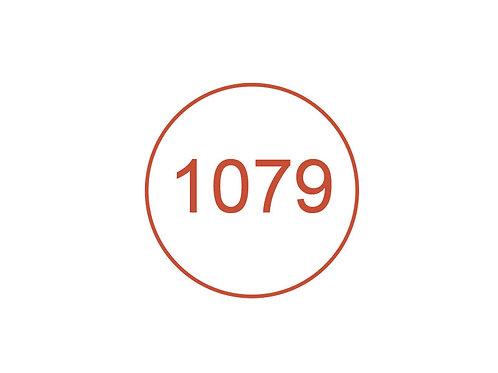Número 1079