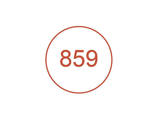 Número 859
