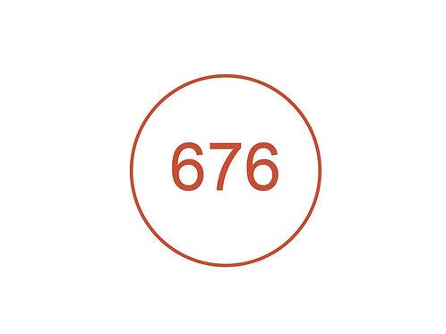 Número 676
