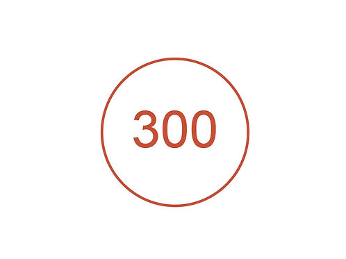 Número 300