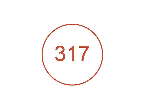 Número 317