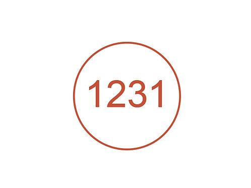 Número 1231