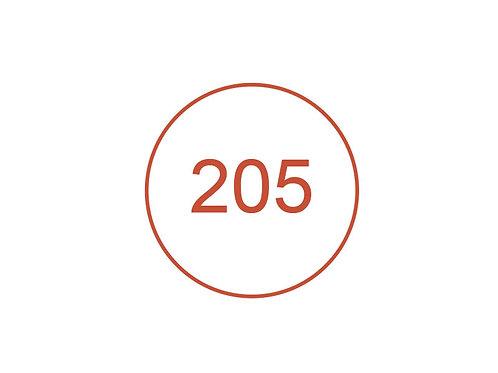 Número 205