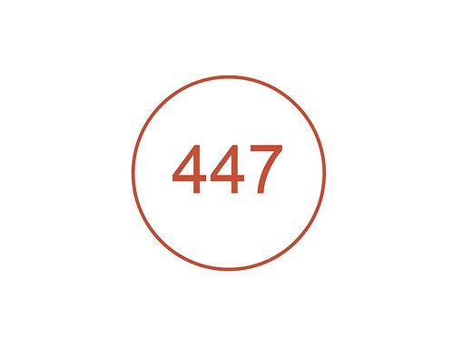 Número 447