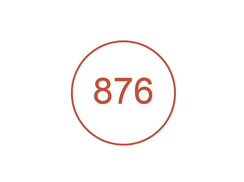 Número 876
