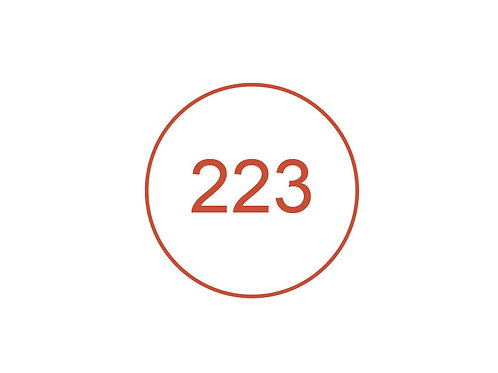 Número 223