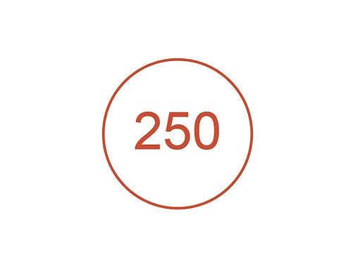 Número 250