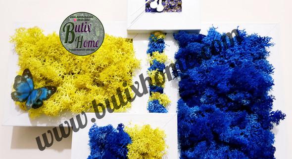 butixhome-b-0004-b.jpg
