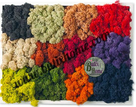 Farklı renk Alternatifleri