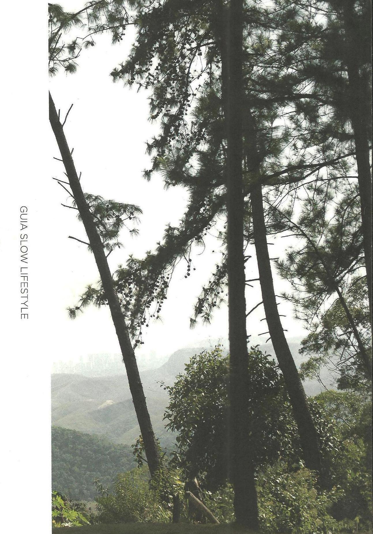 Guia Slow Lifestyle - edição 1