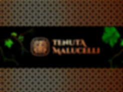 banner-superior_8.png