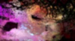 Formicarium_03.jpg