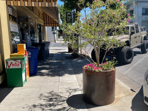 Los Banos Downtown Association Begins Beautifying Downtown