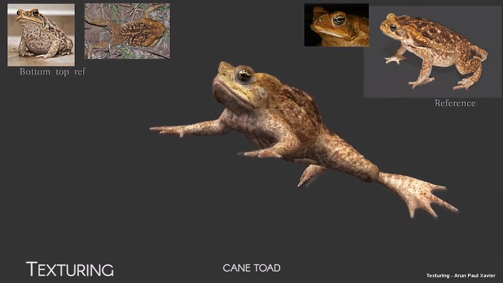 Texturing a frog in visual Effects