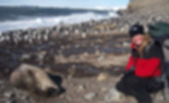 Michelle LaRue penguin