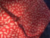 kimono_1024x1024.png