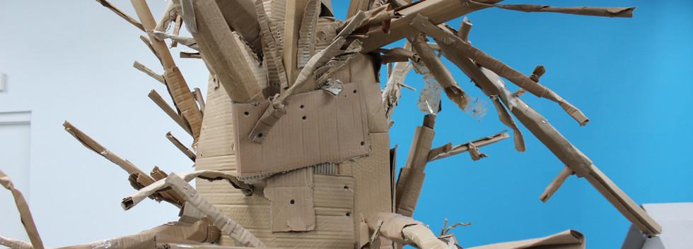 the sycamore tree.JPG