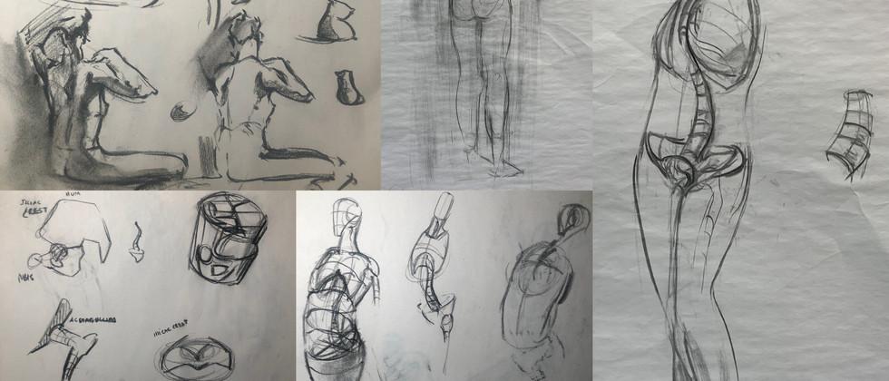 "Jon Akene, 2021 Charcoal on newsprint and paper 14""x11"" paper, 36""x24"" newsprint  Drawing III Figure Drawing Three Major Masses: Skull, Spine, Ribcage and Pelvis Texas Tech University"