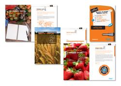Barclays – Sainsburys pitch book