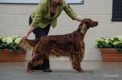 Marnie 2nd in limit at ISCS and RBCC