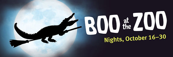 Boo at the ZooBanner 2018.jpg
