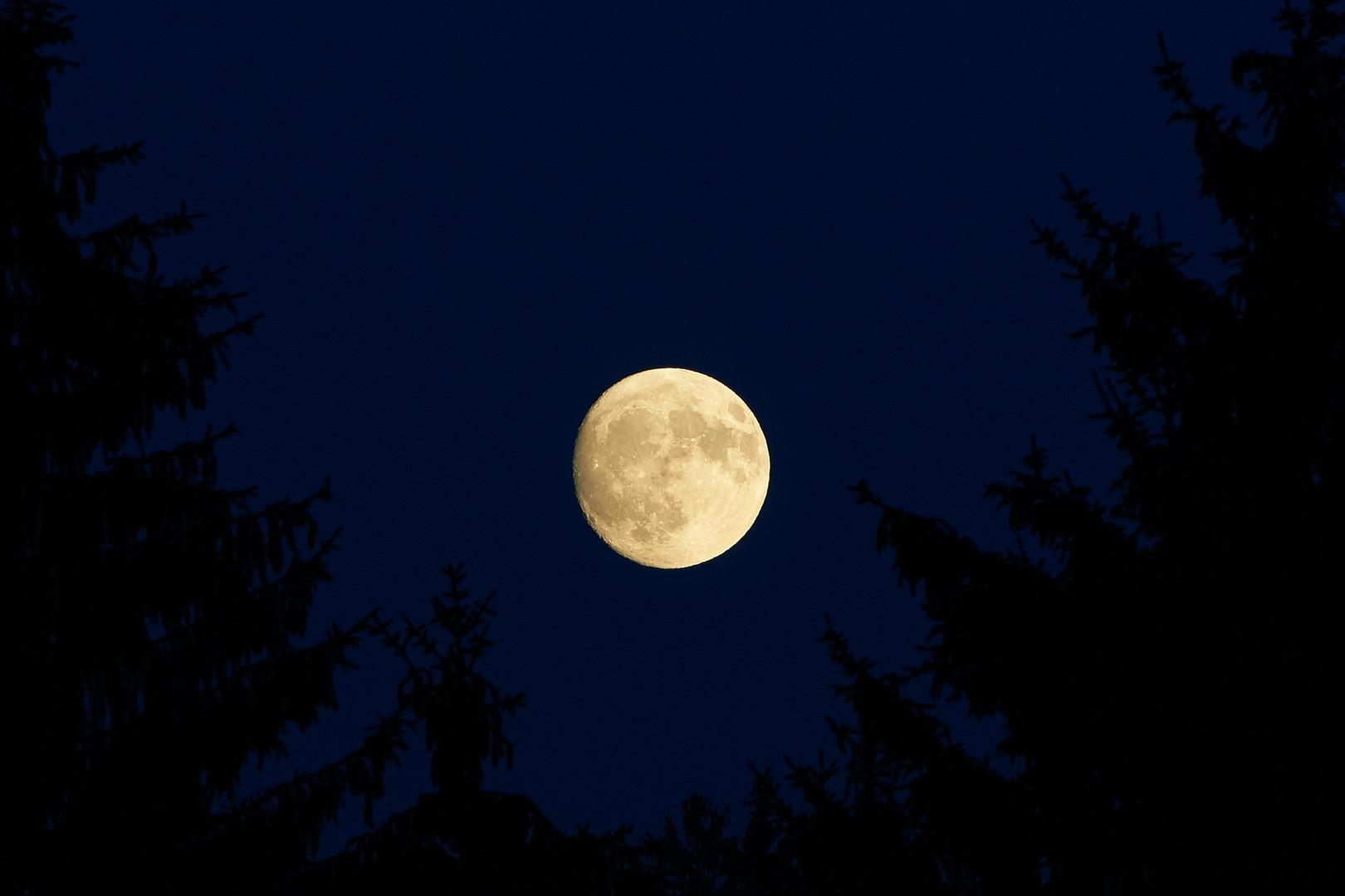 full-moon-transylvania.jpg