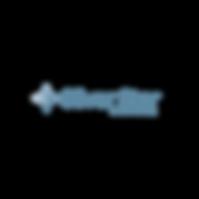silver_logo_horizontal.png