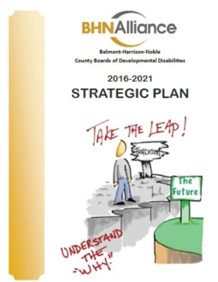 bcbdd_Strategic_plan.jpg