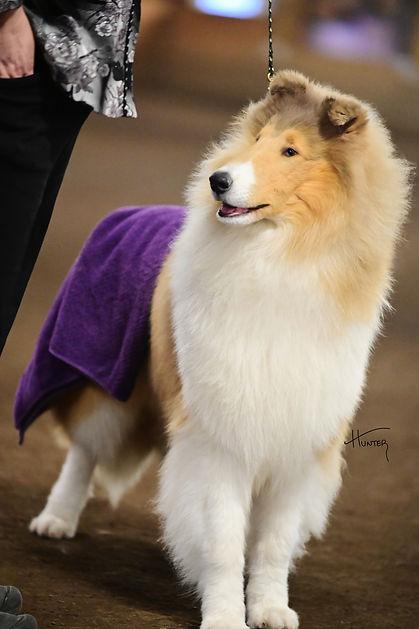 Caper lovely towel.jpg