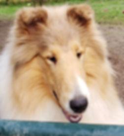 Caper face 3.jpg