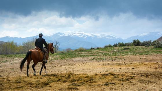 Endurance Riding: Broadening Riders' Horizons