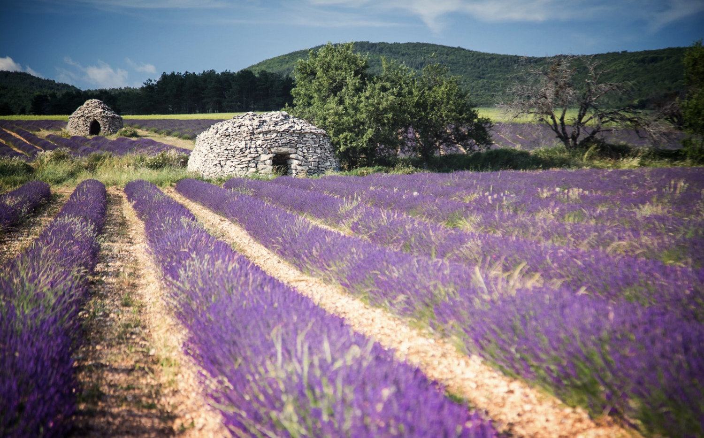 Farben der Provence | Bories | fototouren.net