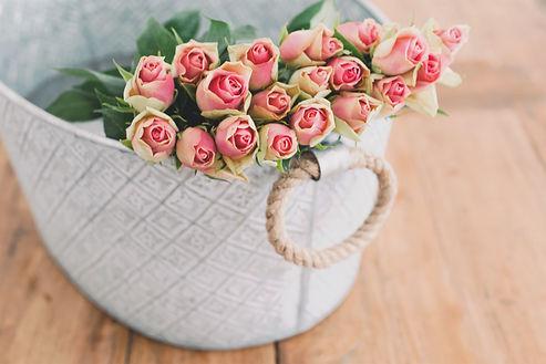 יערת הדבש ורדים