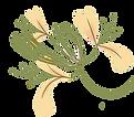 יערת הדבש פרח.png