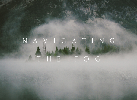 Navigating the Fog