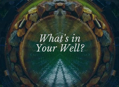 What's in Your Well?