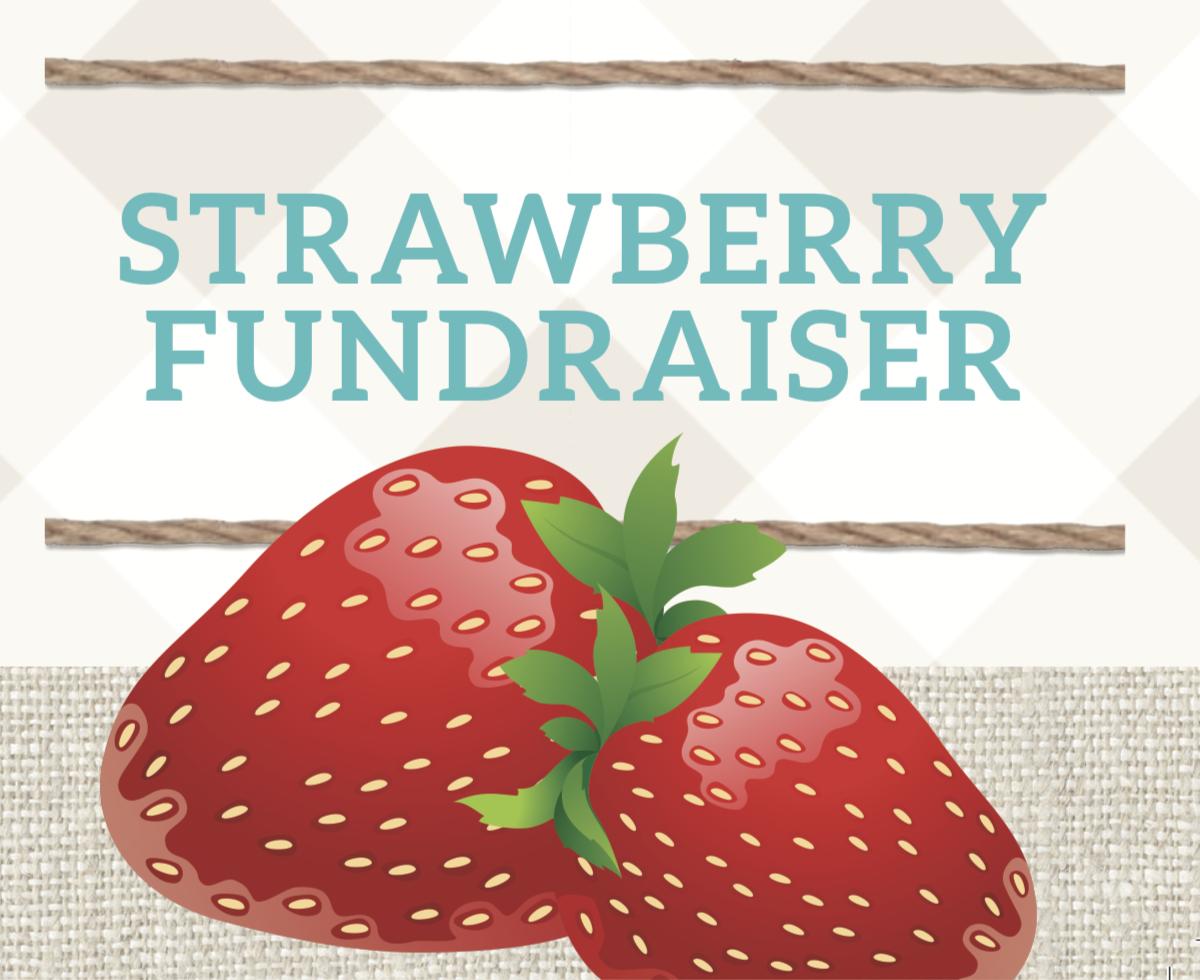 HDS strawberry fundraiser