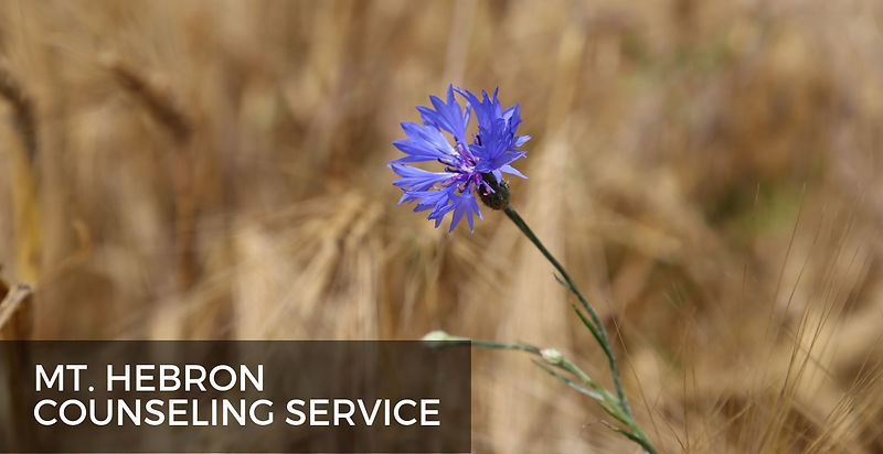 counseling service-1.jpg
