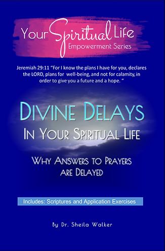 Divine DelaysNoBoarder.png