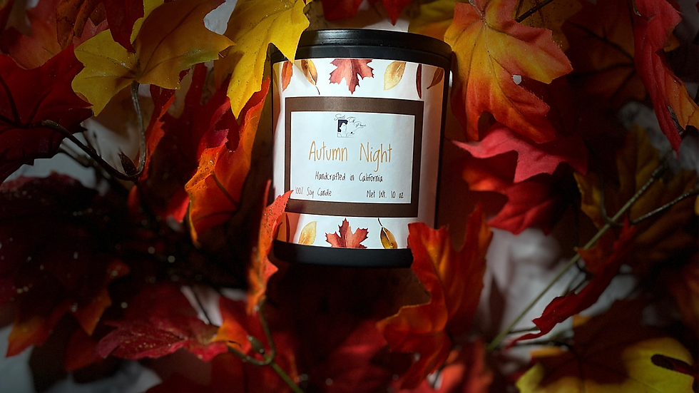 AUTUMN NIGHT 10 OZ CANDLE