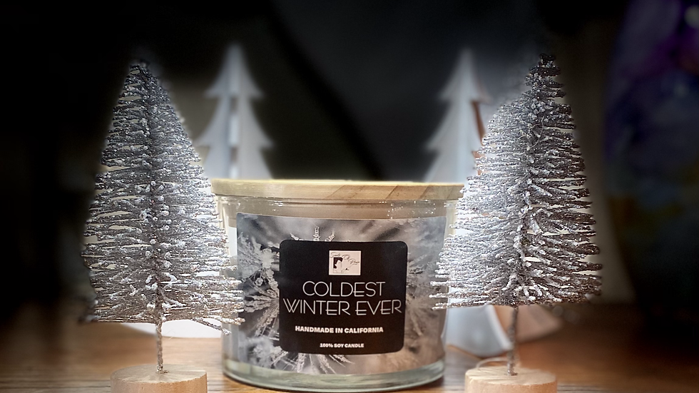 Coldest Winter Ever Soy Candle