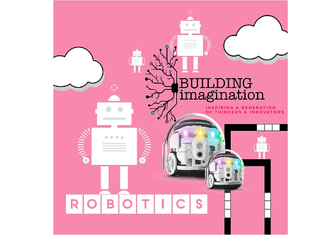 Kensington Wade - Robotics - Summer Term 2020