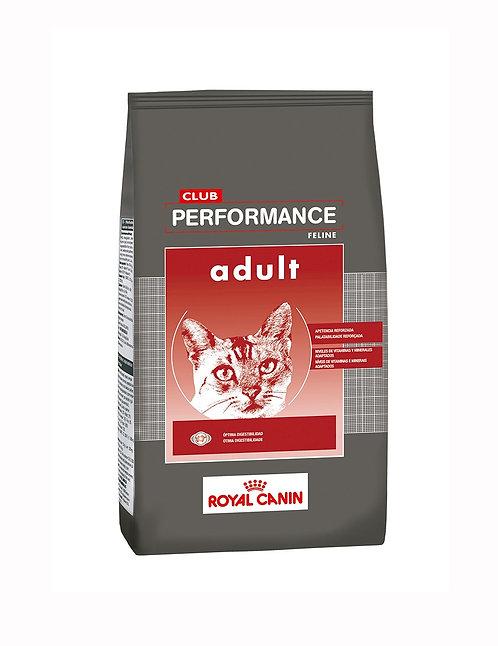 PERFORMANCE GATO ADULTO X 1,5 KG