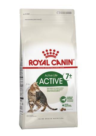 ROYAL CANIN GATO ADULTO EXTERIOR +7 X 1,5 KG