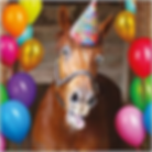 horsebirthdayparty.png