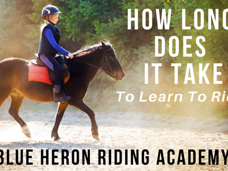 How Long Does It Take To Learn To Ride A Horse?
