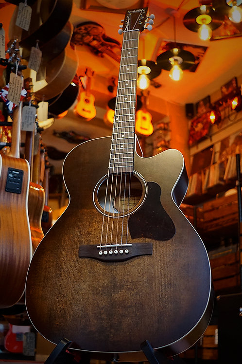 Art & Lutherie Legacy CW Q1T