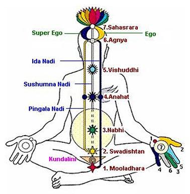 Subtle-energy-body-Prana.jpg