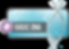 Basic DNA Logo.png